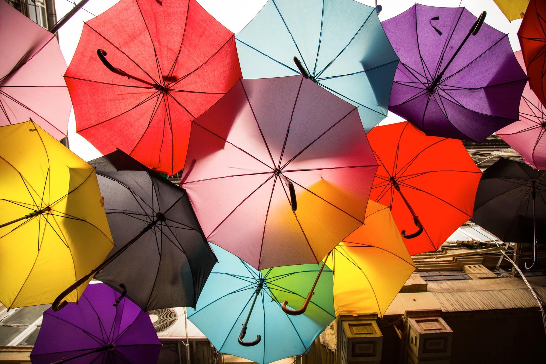 assorted color umbrellas